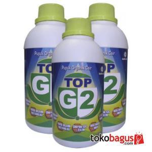 top G2 1