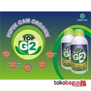 top G2
